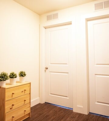 Plants on a wood drawer next to a closet and exit door